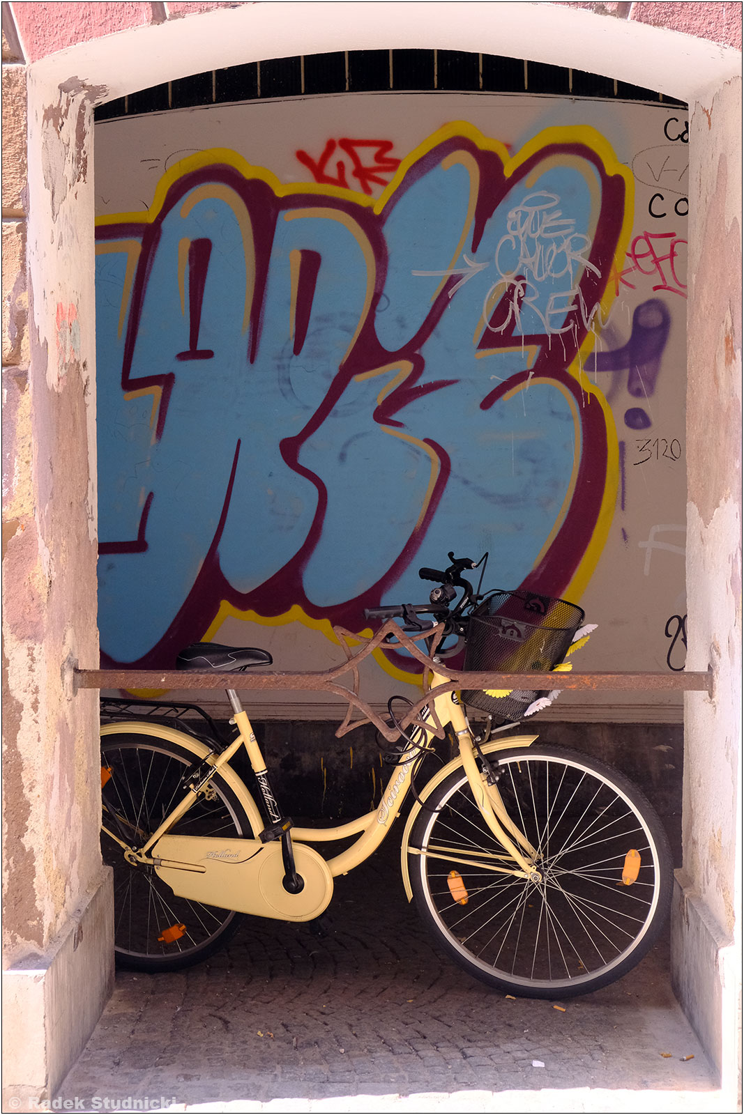 Rower w Lublanie