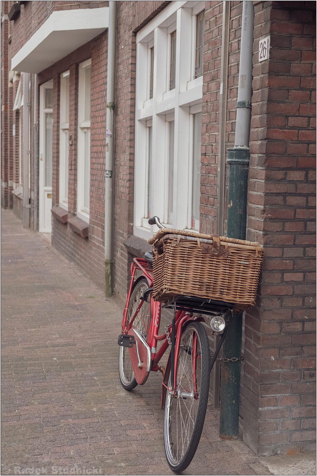 Rower w Holandii