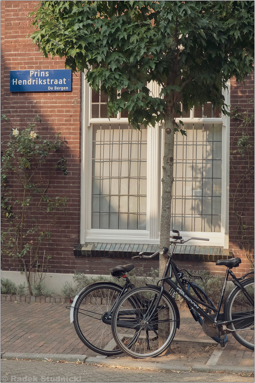 Rower w Eindhoven