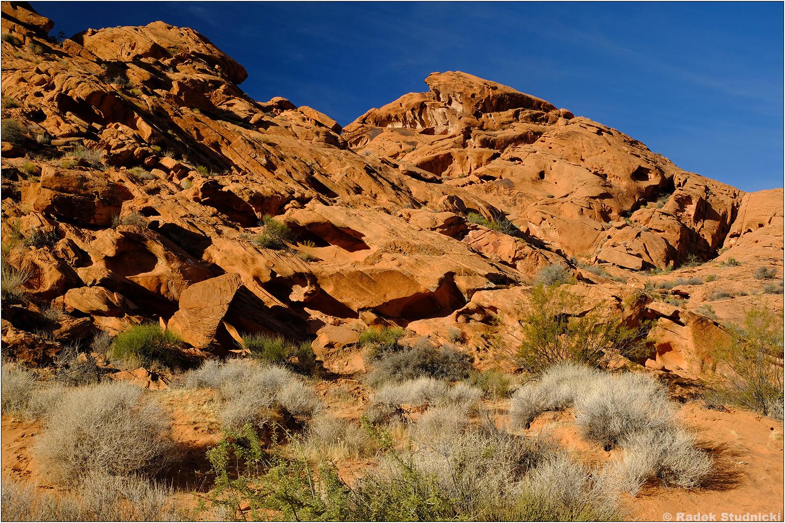 Czerwone skały w Valley of Fire