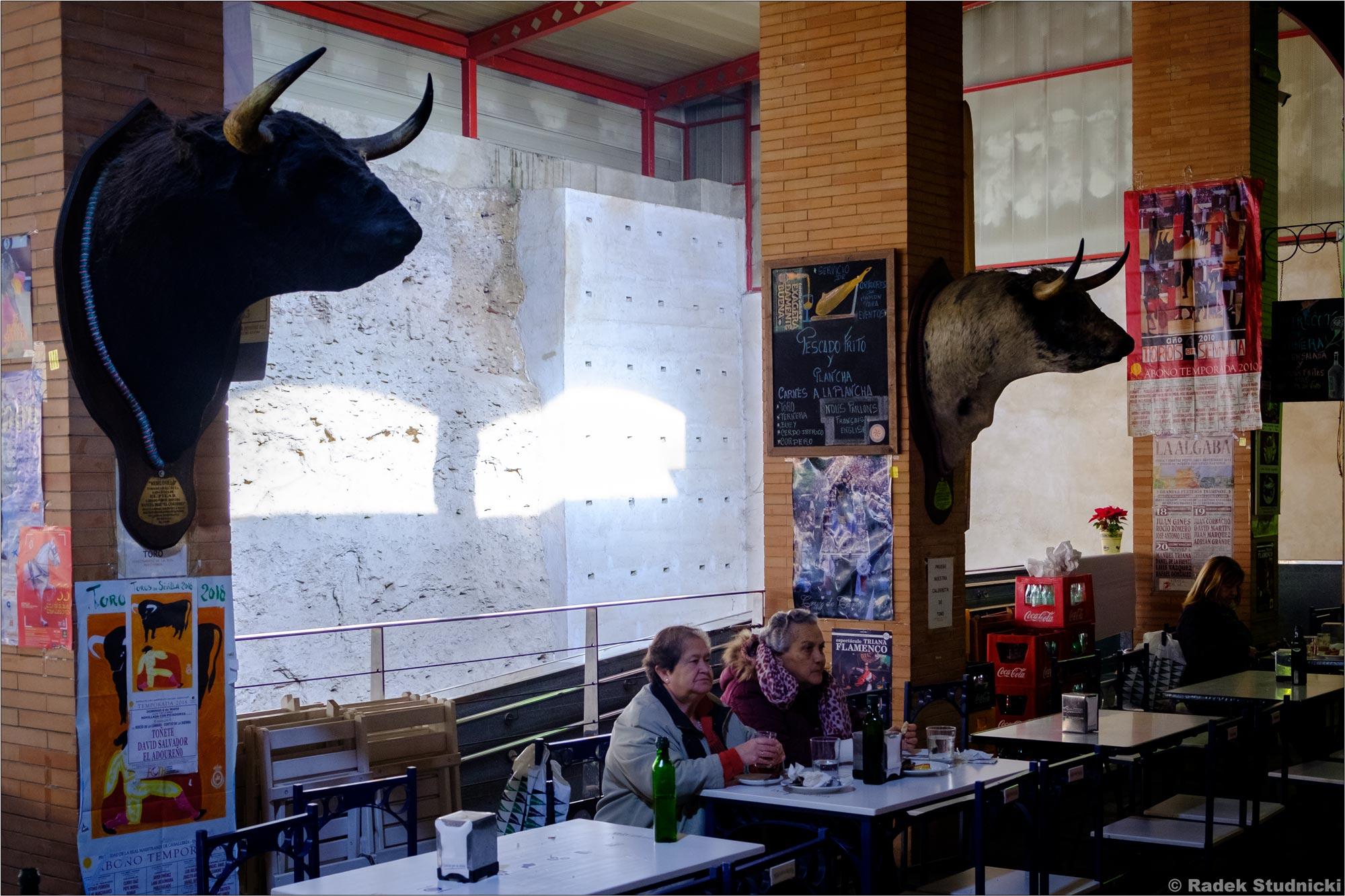 Głowy byków na targu