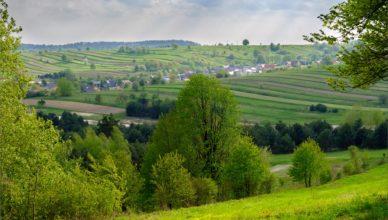 Widok z Bukowej Góry