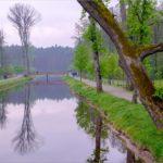 Zwierzyniec: Miasto w środku lasu