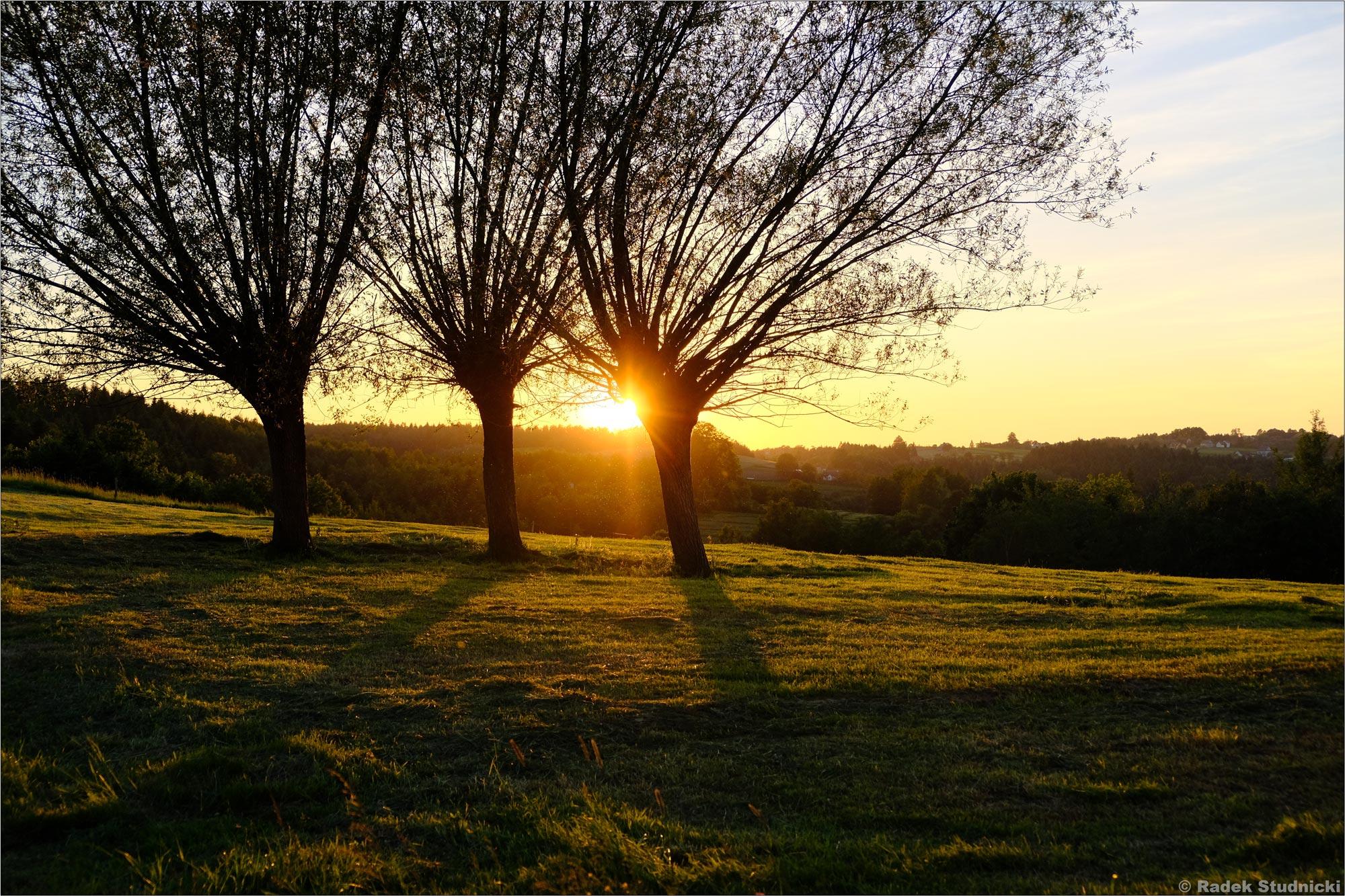 Zachód słońca, Bujne