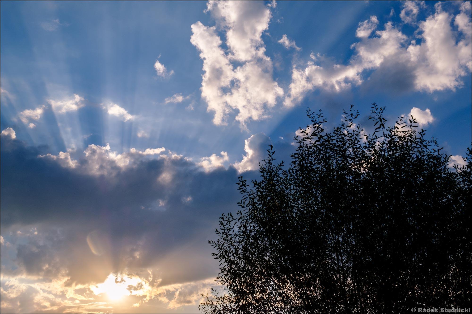 Słońce na wsi