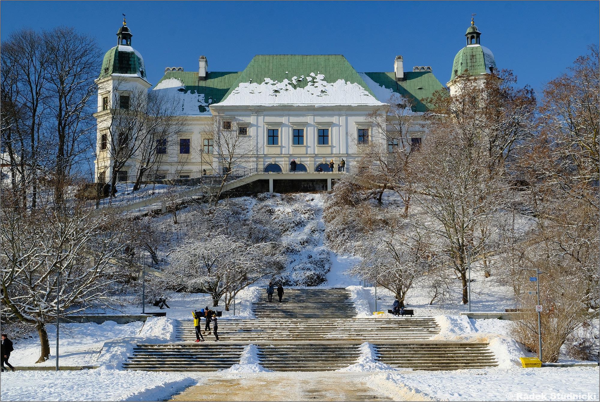 Zamek Ujazdowski zimą