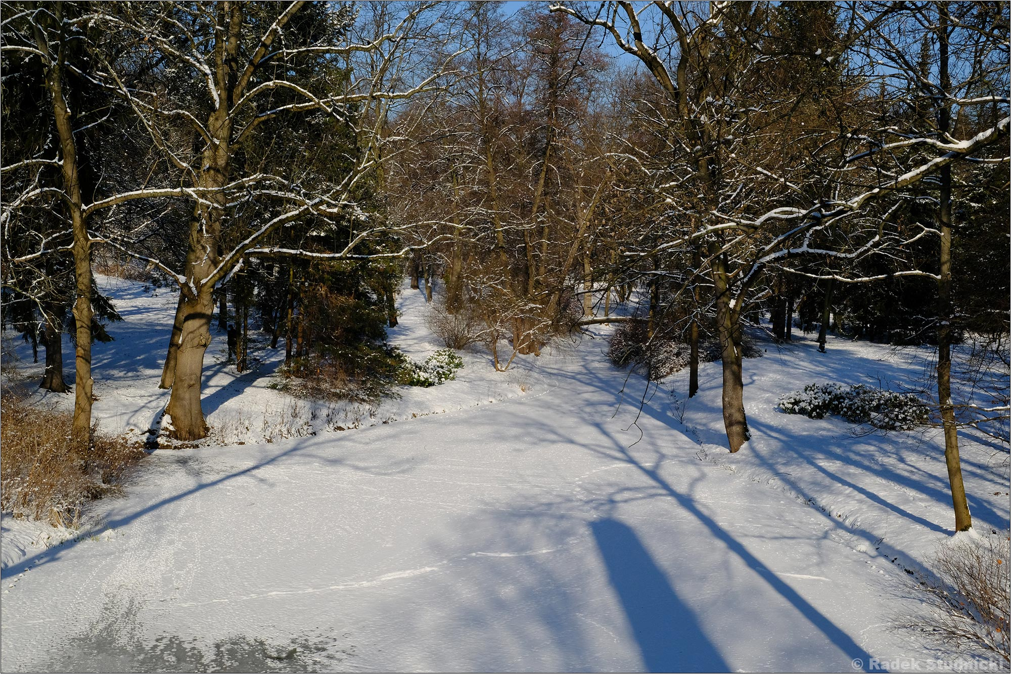 Łazienki zimą