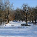 Warszawa: Łazienki Królewski zimową porą