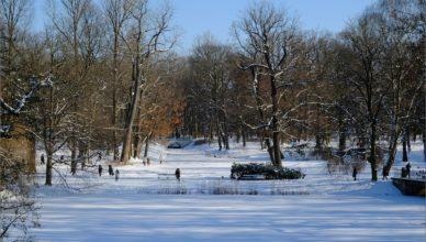 Park łazienkowski zimą