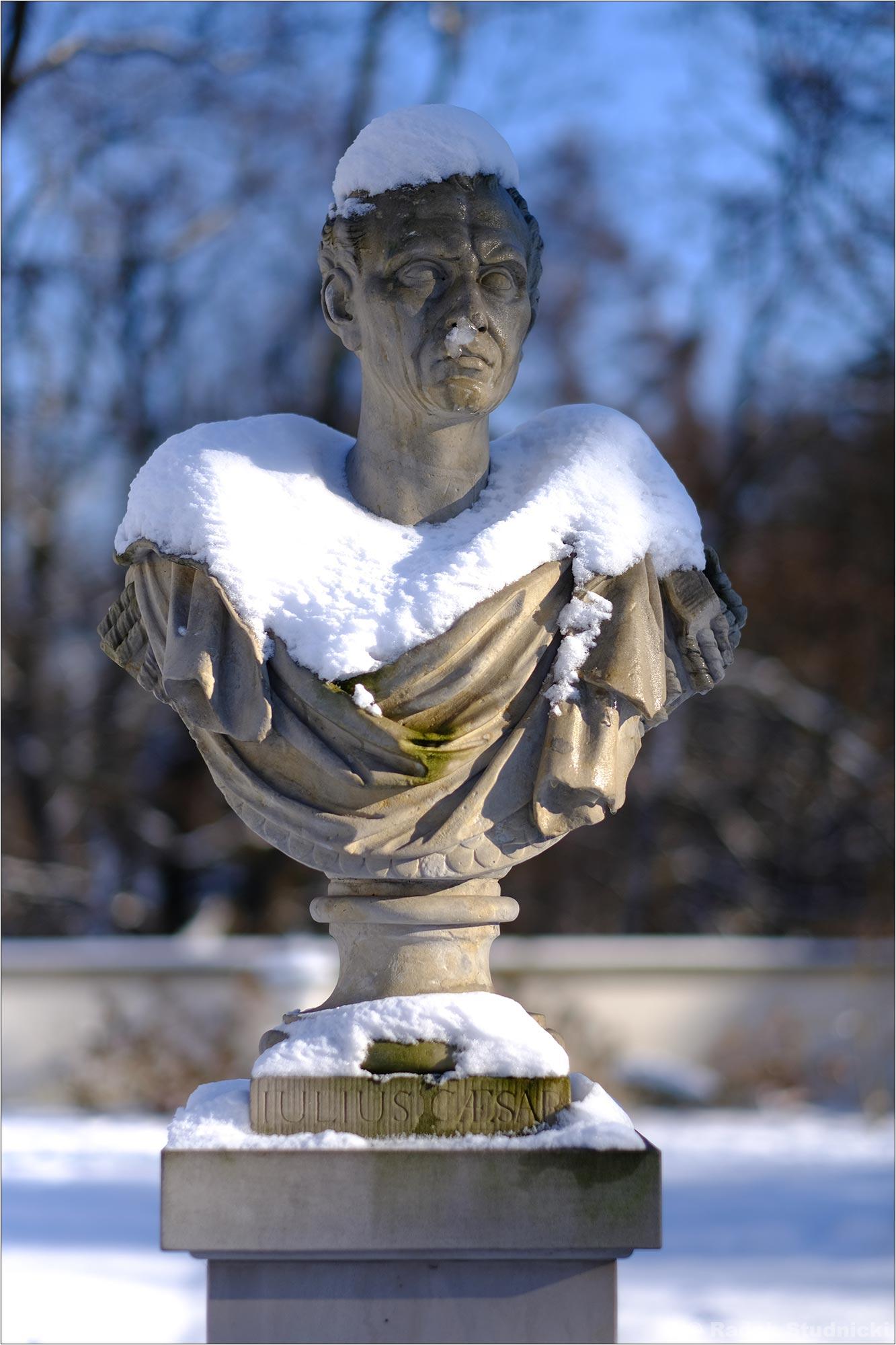 Popiersie Cezara w Łazienkach